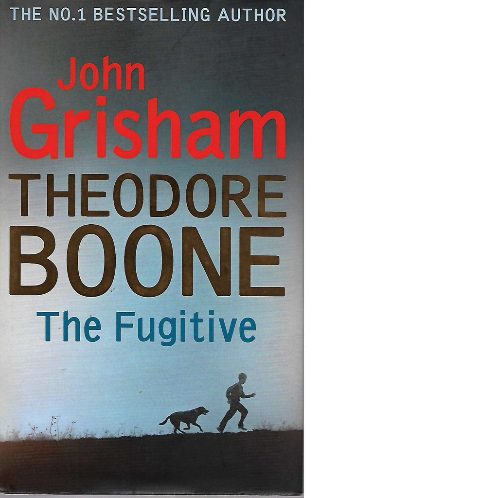 Bookdealers:The Fugitive: Theodore Boone | John Grisham