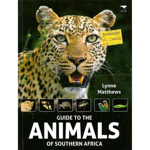A Guide to the Animals of Southern Africa | Lynne Matthews