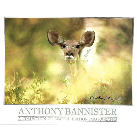 Anthony Bannister: A Collection of Limited Photographs (Invitation to the Exhibition)