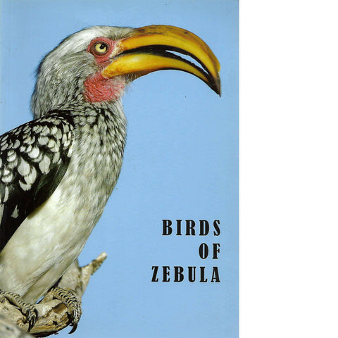 Birds of Zebula | Alan and Surina