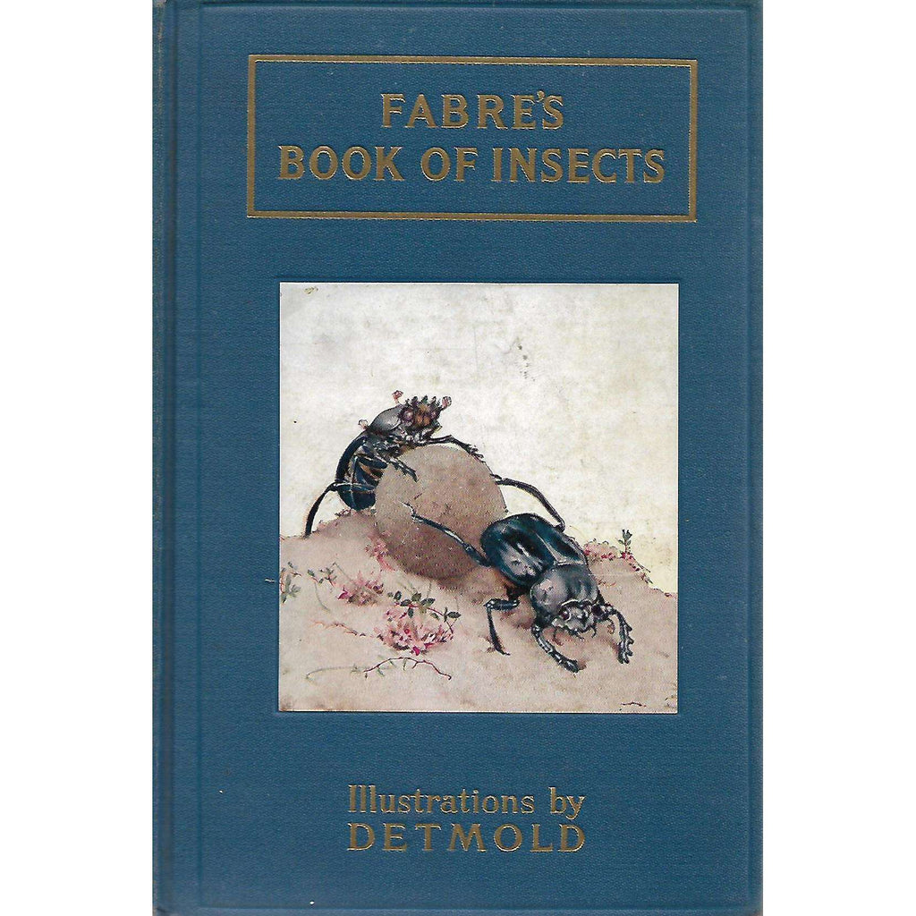 Bookdealers:Fabre's Book of Insects (Illustrations by Detmold) | Mrs. Rodolph Stawell