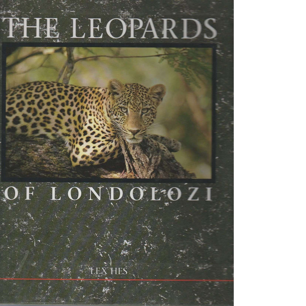 Bookdealers:The Leopards of Londolozi | Lex Hes