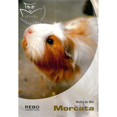 Morcata (Czech) | Netty de Wit