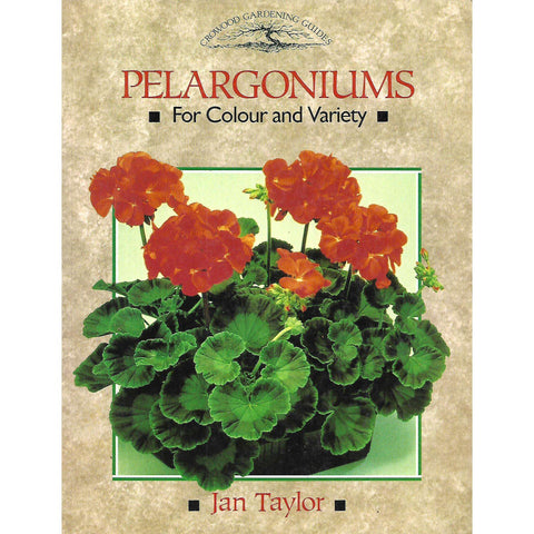 Pelargoniums: For Colour and Variety | Jan Taylor
