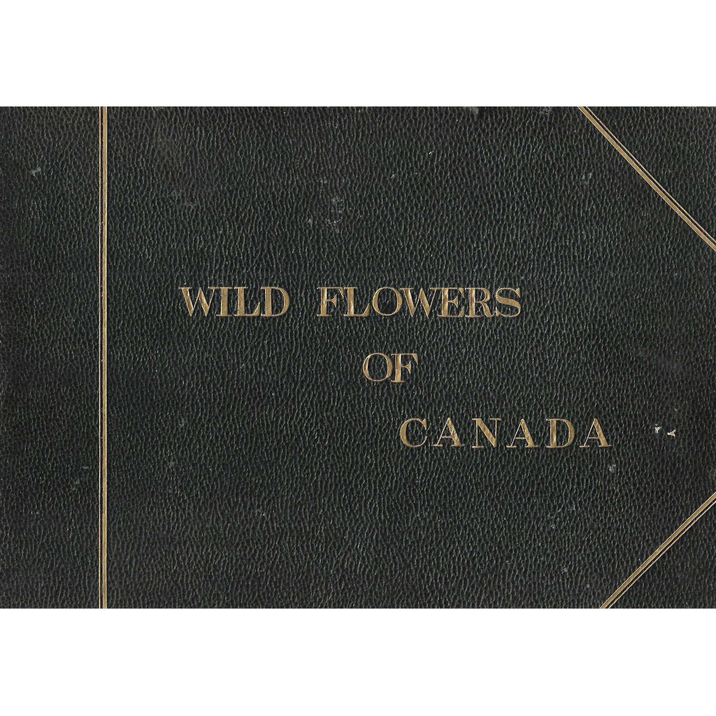 Bookdealers:Wild Flowers of Canada