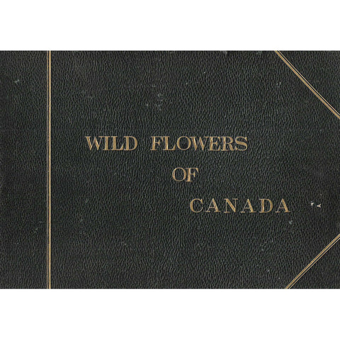 Wild Flowers of Canada