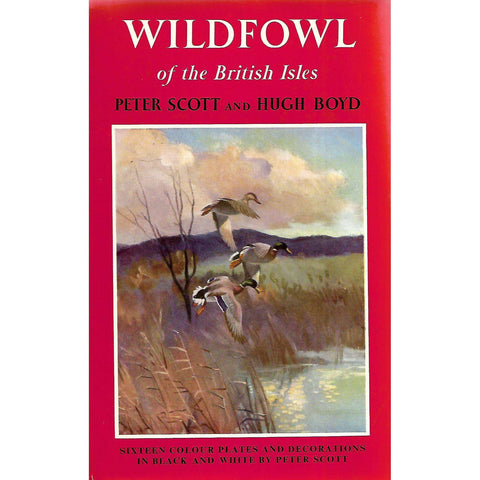 Wildfowl of the British Isles (Signed by Peter Scott) | Peter Scott & Hugh Boyd