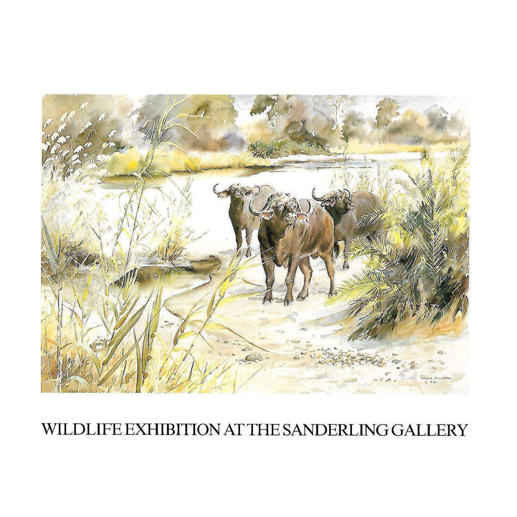 Bookdealers:Wildlife Exhibition at the Sanderling Gallery (Invitation to the Exhibition)