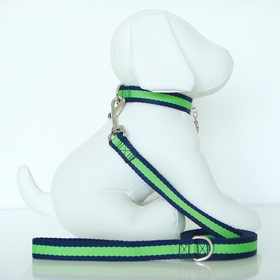 Wagberry Allure Leash