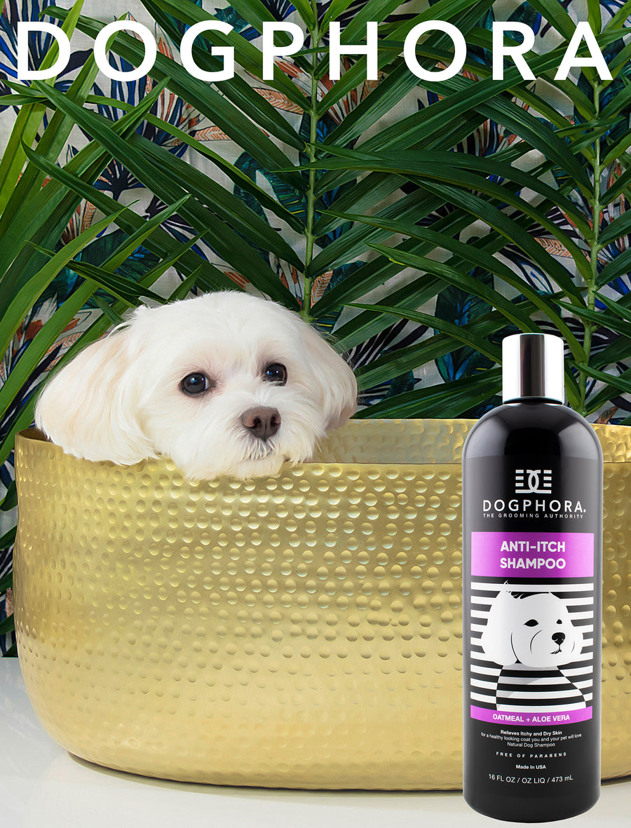 Dogphora Anti-Itch Shampoo