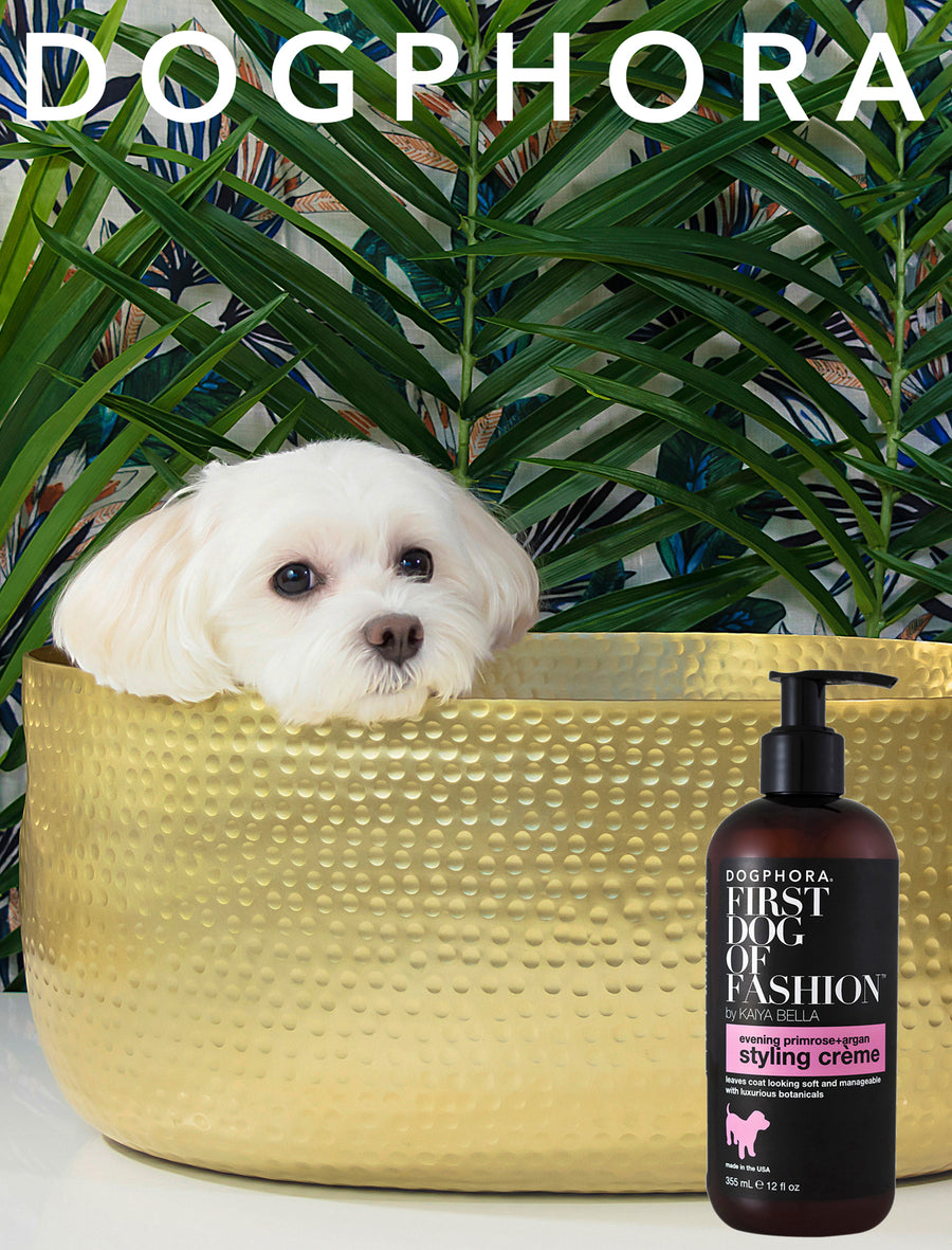 Dogphora First Dog of Fashion Styling Crème