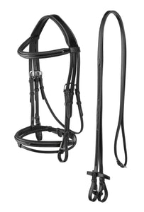 Bridle complete with reins made out of English leather.