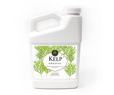 Age Old Kelp, 32 oz