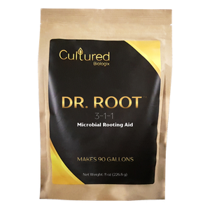 Dr. Root