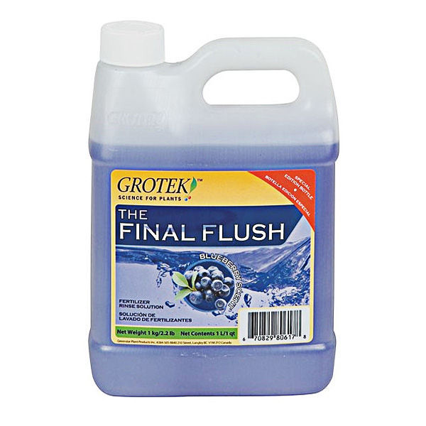 Final Flush Blueberry, 1 L