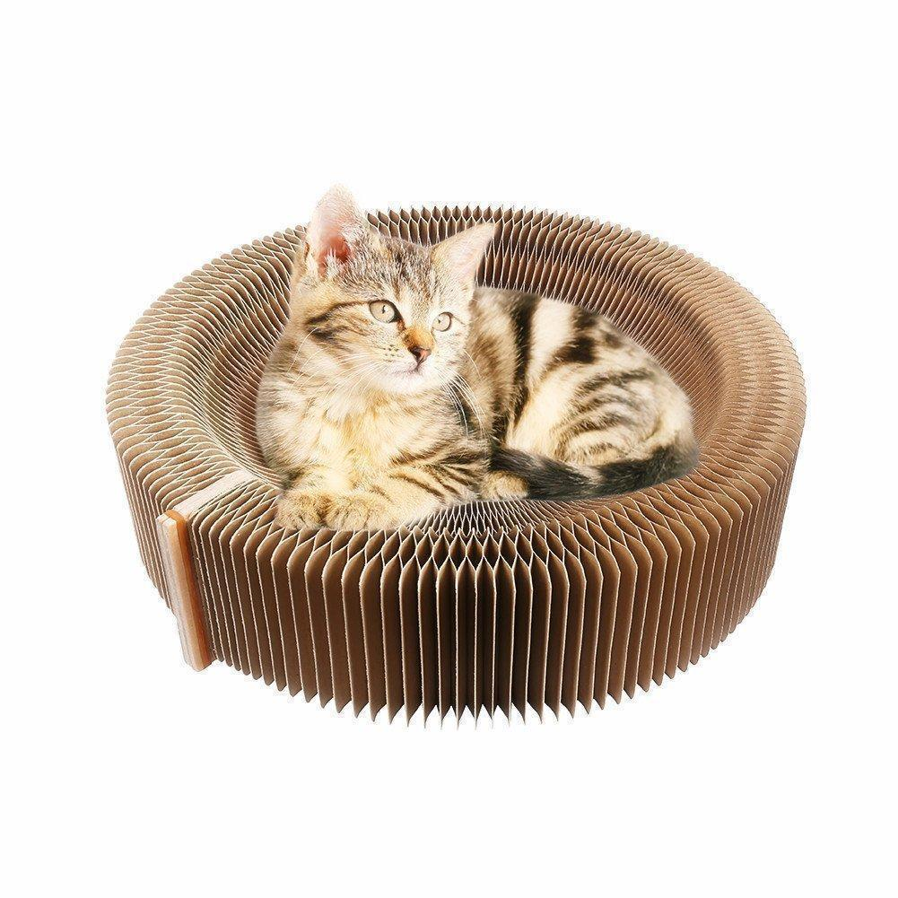 Collapsible Cat Scratcher
