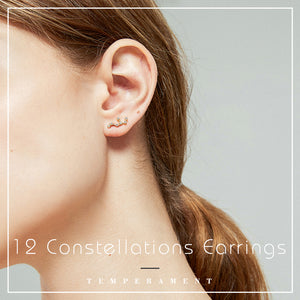 Temperament 12 Constellations Earrings