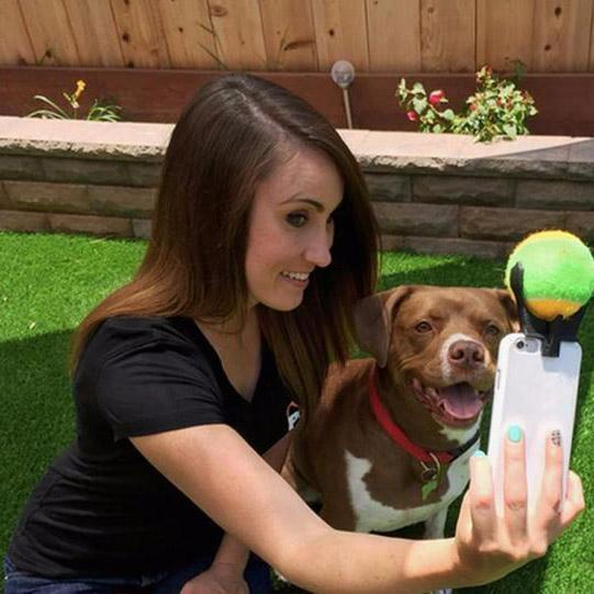 Pet Selfie Stick(1 Set)