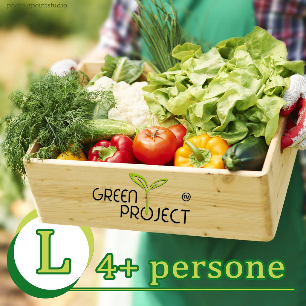 GreenBox L | 4+ persone