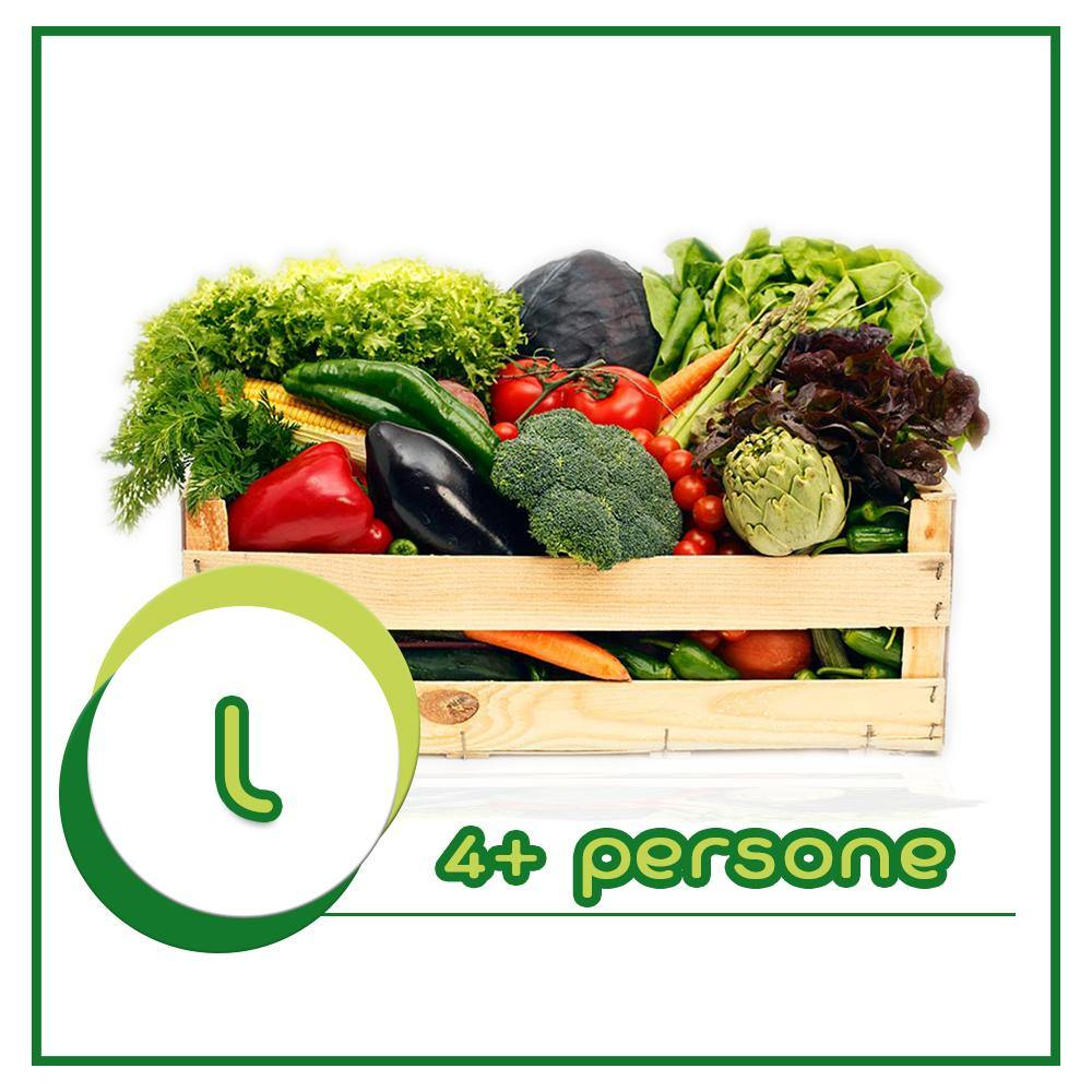 10 GreenBox L | 4+ persone