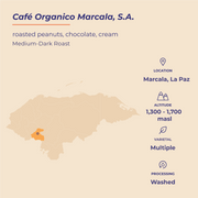 HONDURAS | Marcala | Medium-Dark Roast