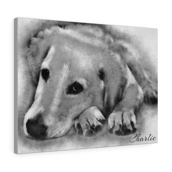 Dog Pencil Sketch Portraits The Ultimate Dog Lover Gift | Cat Sketches | Animal Sketches | Pet Sketches