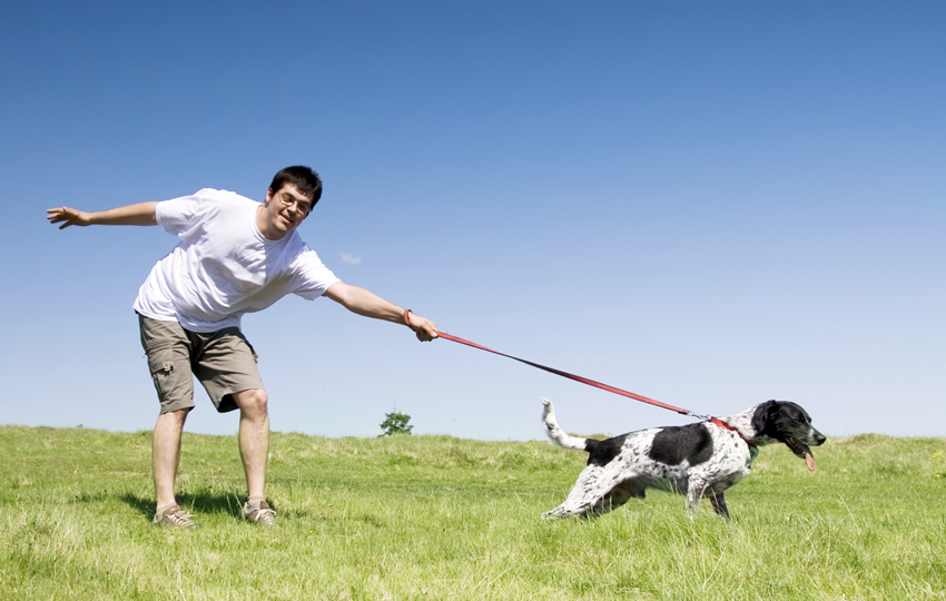 How To Stop Your Dog from Pulling on the Leash - Expert Dog Training Tips