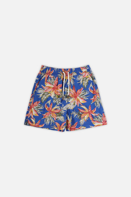 The Oliva Short - Royal