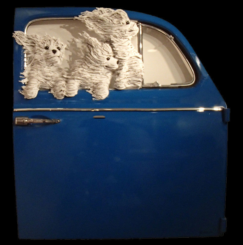 Three Maltese In a Blue VW Door
