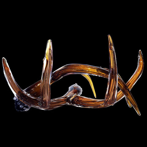 Amber Antlers
