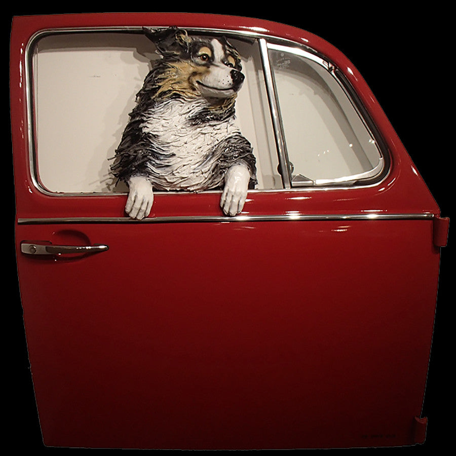 Australian Shepherd in a Red VW Door