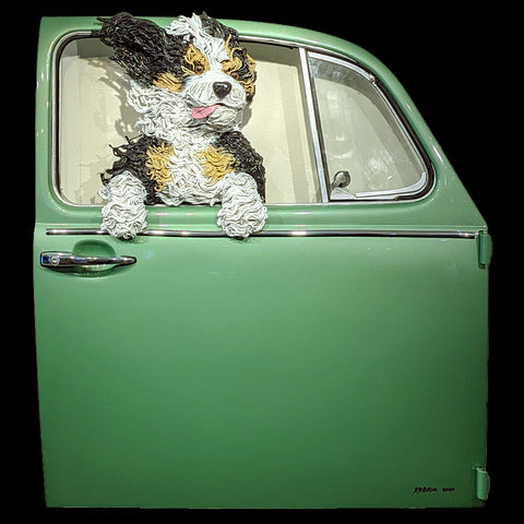 Bernedoodle in a Sage Green VW Door