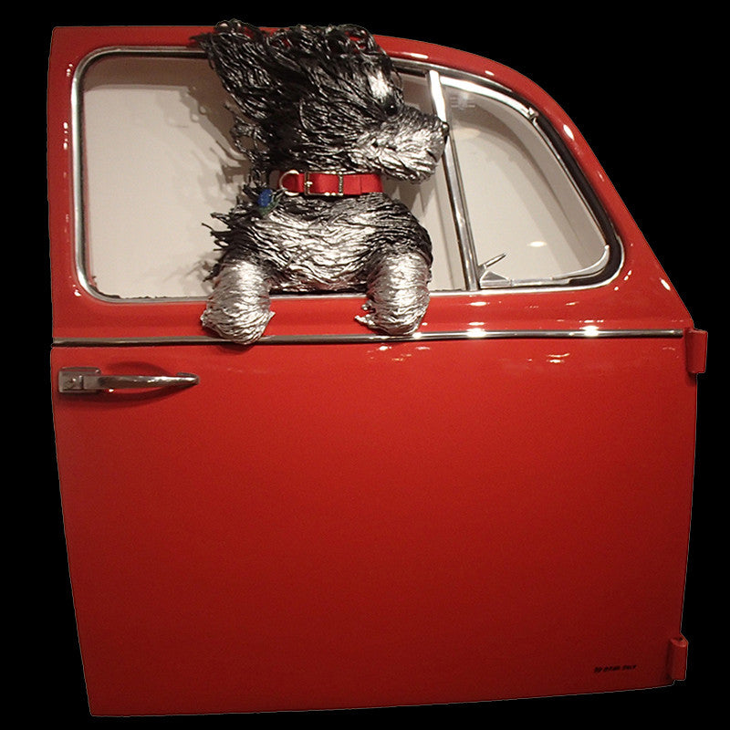 Black and Silver Dog in a Red VW Door