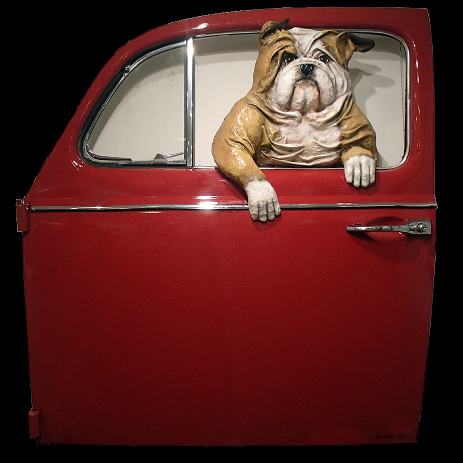 Bulldog in a Red VW Door