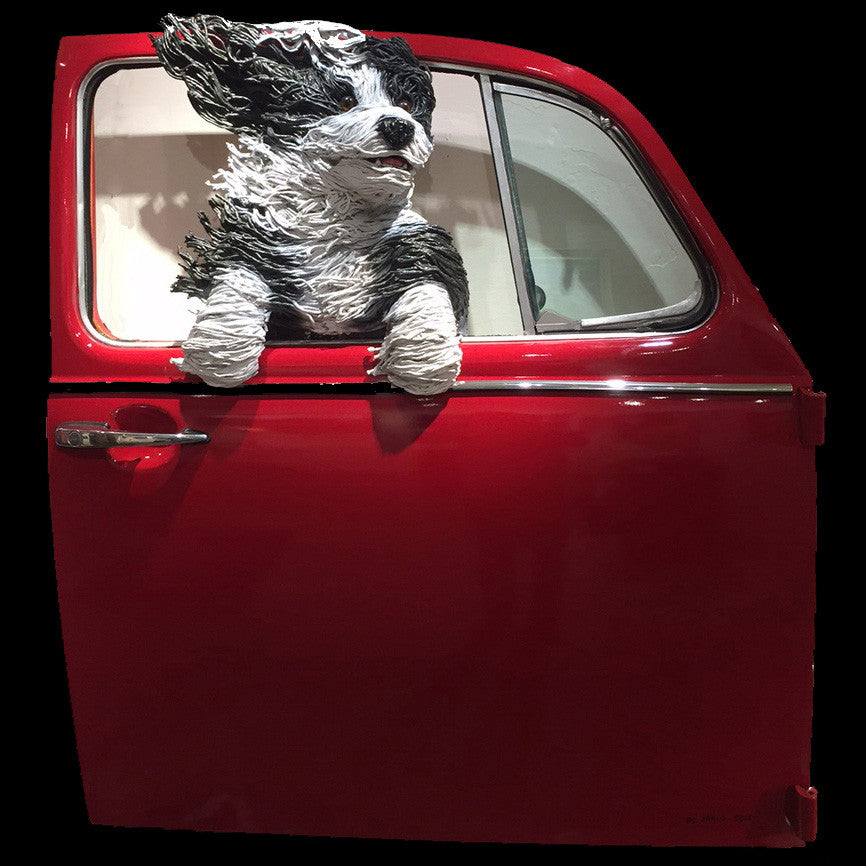 Sheepdog in a Red VW Door