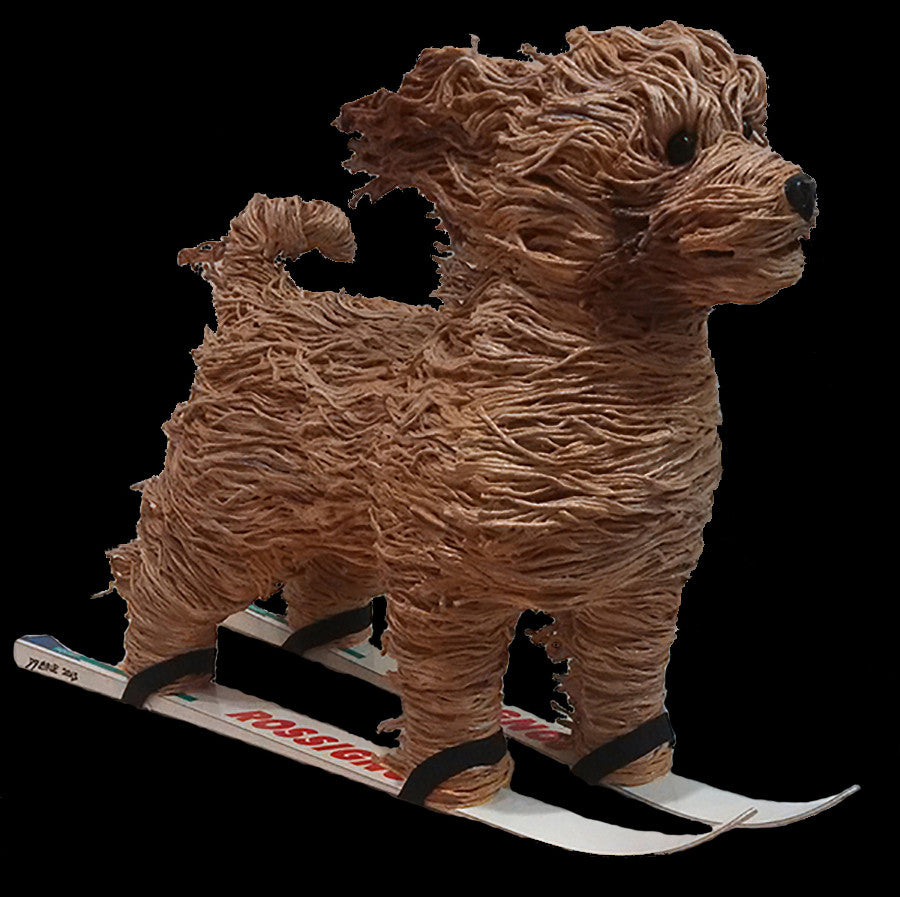 Dog on Skis