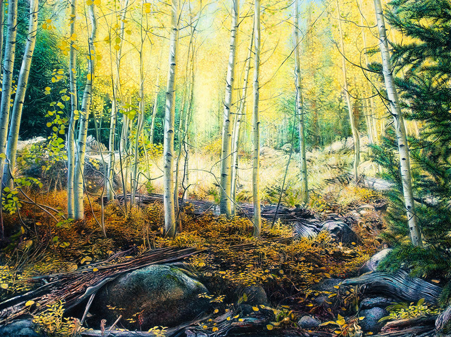 Enchanted Light original oil on canvas landscape painting by Colorado artist Thane Gorek