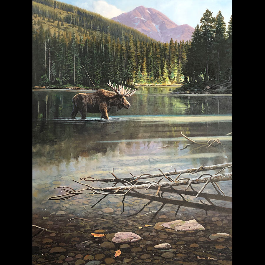 Evening Solitude original oil on canvas landscape mountain painting of a moose in a lake by Colorado artist Maxine Bone
