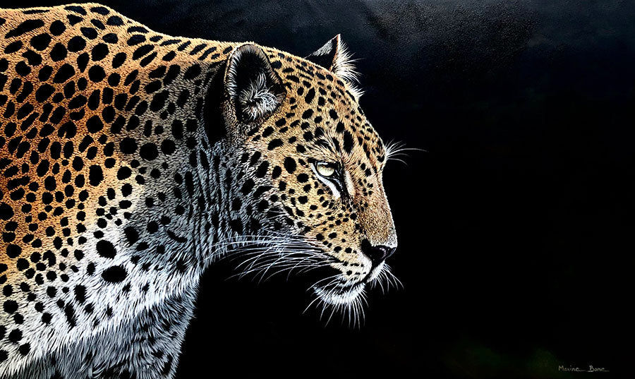 Game Face original oil on canvas wildlife painting by Colorado artist Maxine Bone