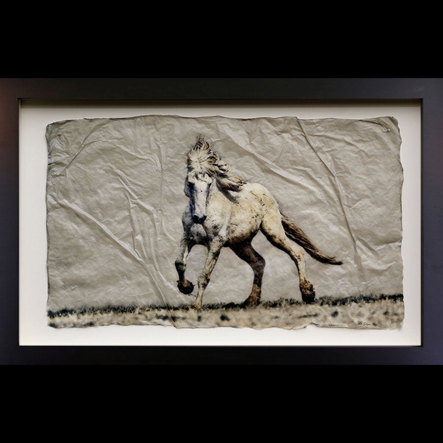 Mustang Dance photo printed on gampi in black frame created by artist Pete Zaluzec