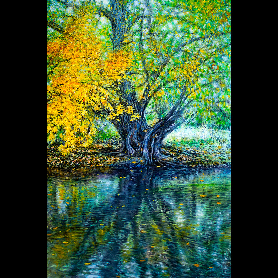Artist Thane Gorek Original Art For Sale Colorado Poudre River Tree Oil Painting