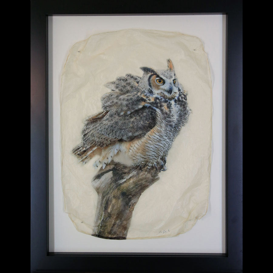 Perched gampi photo print of an owl on a branch created by Pete Zaluzec