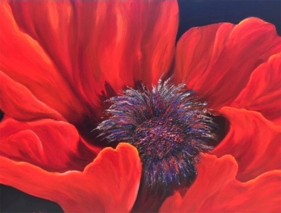Red Poppy Painting by artist Katherine McNeill