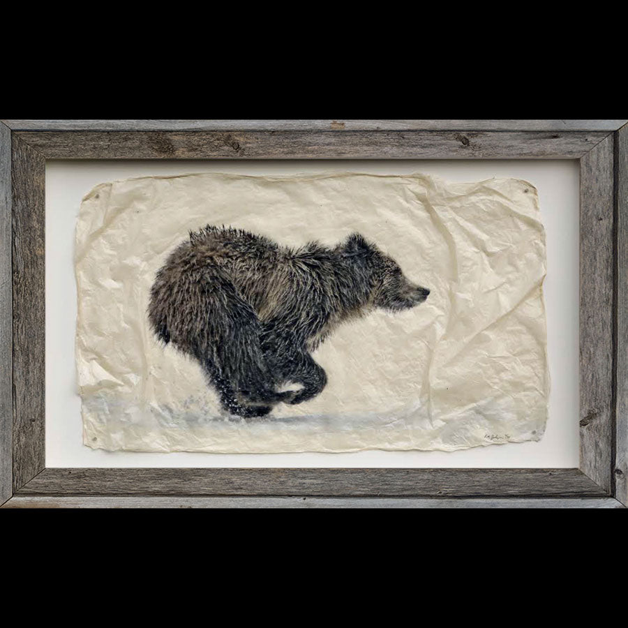 Running grizzly bear wildlife gampi print by artist Pete Zaluzec