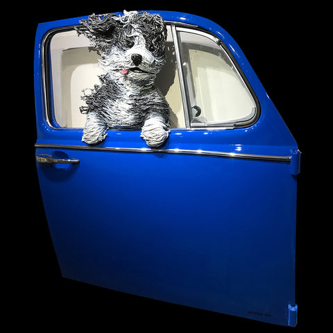 Sheepdog in a Blue VW Door