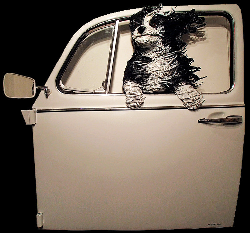 Sheepdog in a White VW Door