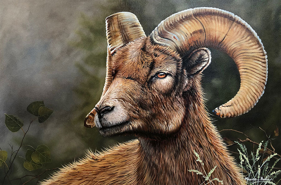 Tanngnjóstr oil on canvas wildlife sheep painting by Colorado artist Maxine Bone