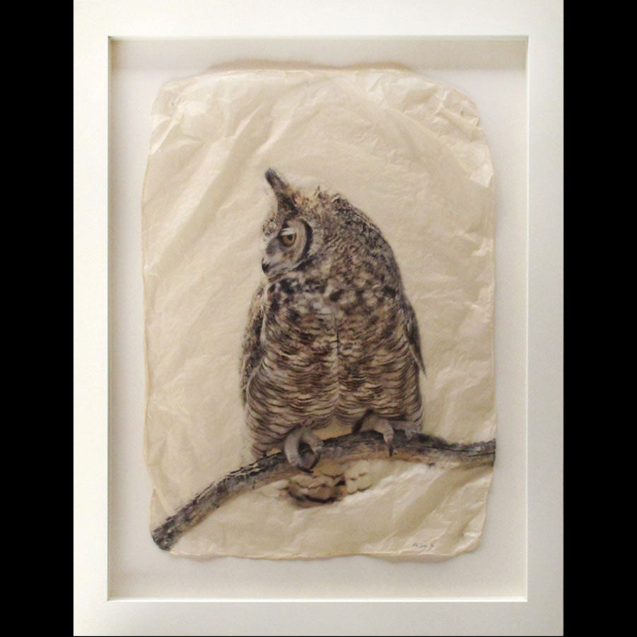Unconcerned owl photo gampi print in white frame created by Pete Zaluzec