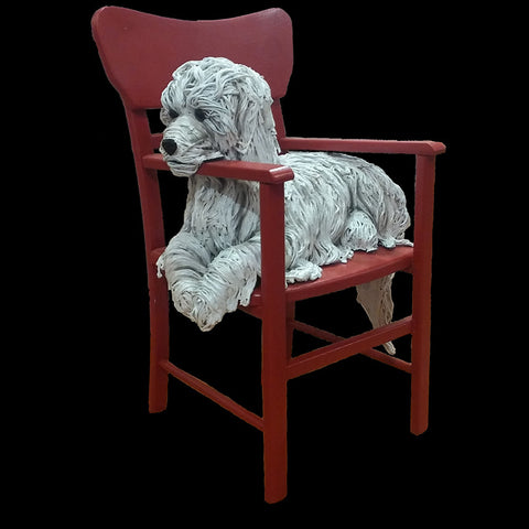 White Dog on a Red Chair