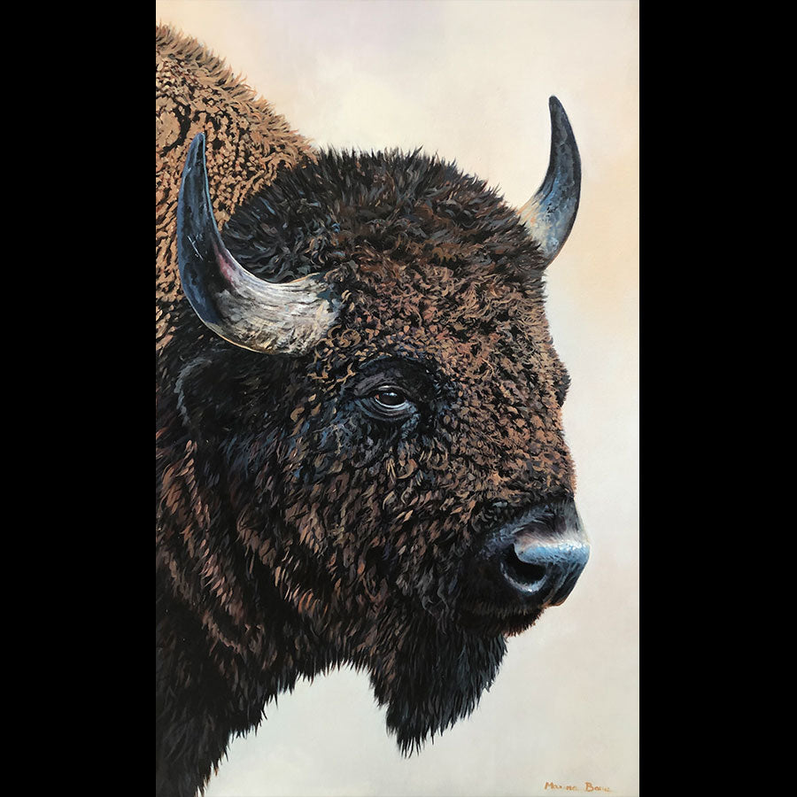 Bison Portrait original oil on canvas bison wildlife painting by Colorado artist Maxine Bone